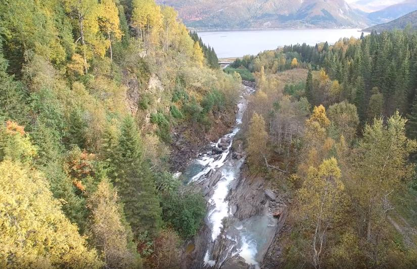 Breivikelva renner ut i Beiarfjorden: Foto SKS